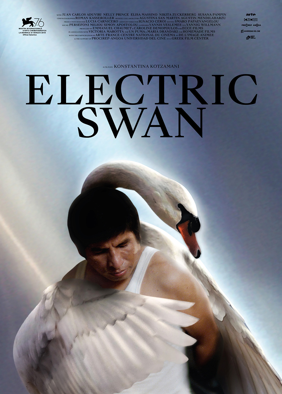 Electric Swan Poster