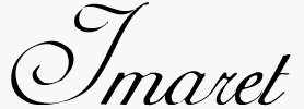 metsovo_logo